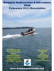 Dolphin Underwater & Adventure Club February 2013 Newsletter