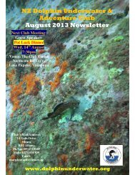NZ Dolphin Underwater & Adventure Club August 2013 Newsletter