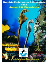 Dolphin Underwater & Adventure Club August 2012 Newsletter