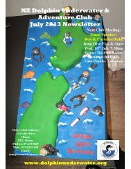 NZ Dolphin Underwater & Adventure Club July 2013 Newsletter