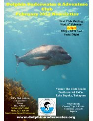 Dolphin Underwater & Adventure Club February 2012 Newsletter