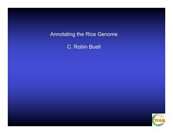 Annotating the Rice Genome C. Robin Buell