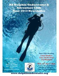 NZ Dolphin Underwater & Adventure Club June 2013 Newsletter