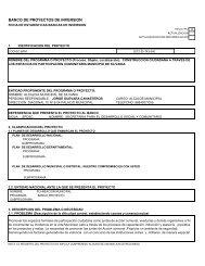 Descargar ficha EBI 103.3 kB - Sitio web del municipio Silvania en ...