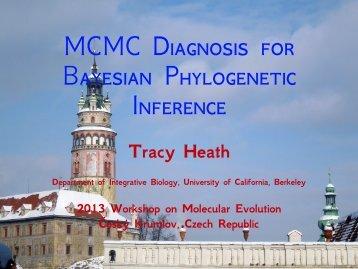 MCMC diagnostics