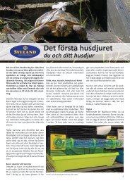 Det första husdjuret du och ditt husdjur - Sveland