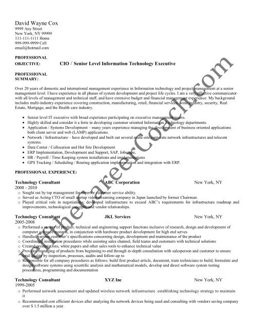 Download The Technology Consultant Resume Sample Two In Pdf