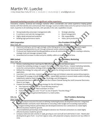 Download The Vice President Of Marketing Resume Sample Two In .