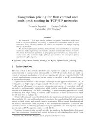 Congestion pricing for flow control and multipath routing in TCP/IP ...
