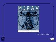 Segmentation and Annotation - mipav