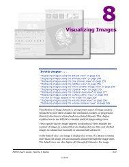 Visualizing Images - mipav