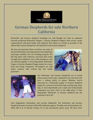German Shepherds for sale Northern California