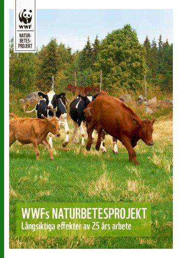 14-3890_naturbetesmarker 2015 stor