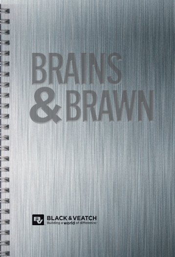 Brains and Brawn Inside Pages AEUK2013 version ... - Black & Veatch