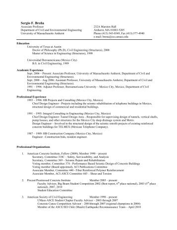 curriculum vitae school of civil engineering usm