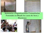 asistencia a organizaciones comunitarias forestales, brasil