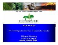 EXPOSICIÓN La Tecnología Intermedia y el Desarrollo Forestal ...