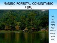 MANEJO FORESTAL COMUNITARIO - PERU - Sistema de ...