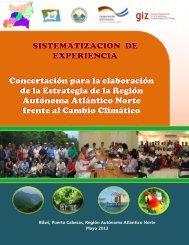 Sistematización Concertación para la elaboración ... - MASRENACE