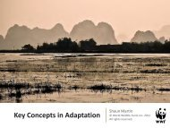 Key Concepts for Adaptation