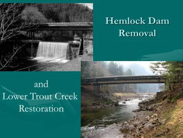 Hemlock Dam Removal