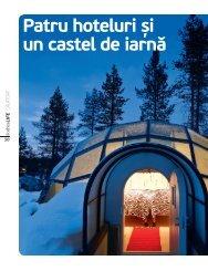 Patru hoteluri și un castel de iarnă - Diana-Florina Cosmin