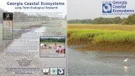 Georgia Coastal Ecosystems Georgia Coastal ... - LTER Intranet