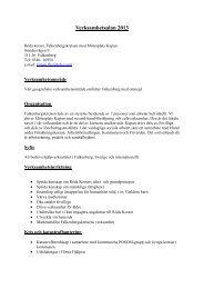 Verksamhetsplan 2013.pdf