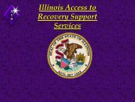 Illinois Access To - State Systems Development Program VIII ...