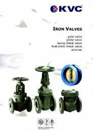cast iron gate valve - class 125