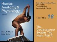 The Cardiovascular System: The Heart: Part A - Next2Eden