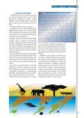 1 • 2008 - Innovare - Page 7