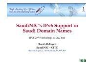 SaudiNIC's IPv6 Support in Saudi Domain Names
