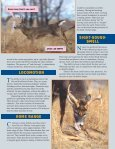 WHITETAIL WONDERS BOOKLET.PMD - Whitetails Unlimited - Page 5
