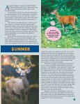 WHITETAIL WONDERS BOOKLET.PMD - Whitetails Unlimited - Page 7
