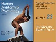 The Digestive System: Part A - Next2Eden