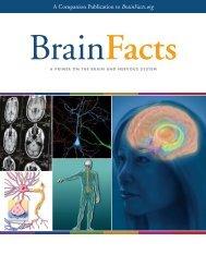 LIVRO-Brain-Facts-2012