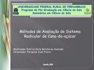 Métodos de Avaliação do Sistema Radicular de Cana-de-açúcar