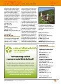 Miskolc és a Bükk – Úti tippek - Page 5
