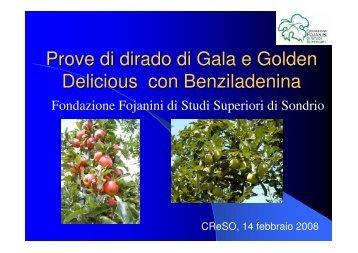 Prove di dirado di Gala e Golden Delicious con ... - InfoKeeper