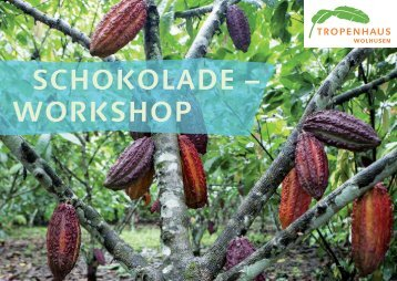 SCHOKOLADE – WORKSHOP - Coop