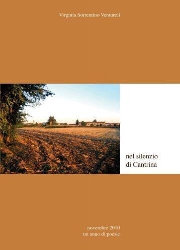 Nel silenzio di cantrina - Lino Franceschini