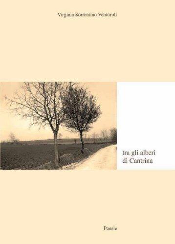 Tra gli Alberi di Cantrina - Lino Franceschini