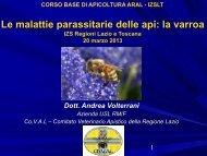 la varroa - (IZS) delle Regioni Lazio e Toscana