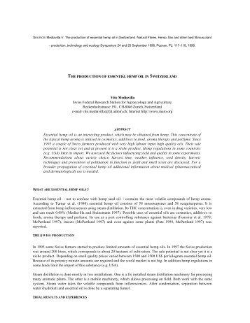 THE PRODUCTION OF ESSENTIAL HEMP OIL ... - Vito Mediavilla.ch