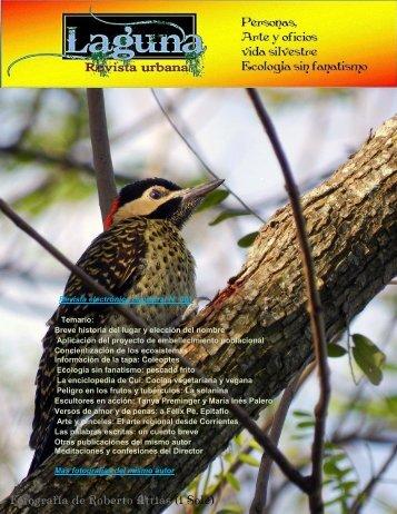 laguna, revista urbana -Junio 2015
