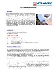 Zahnflankenprofilschleifen - ATLANTIC