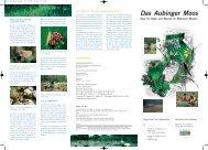 Das Aubinger Moos (1,8 MB) - BayernNetz Natur