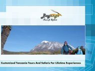 Customized Tanzania Tours And Safaris For Lifetime Experiences
