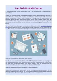 Your Website Audit Queries